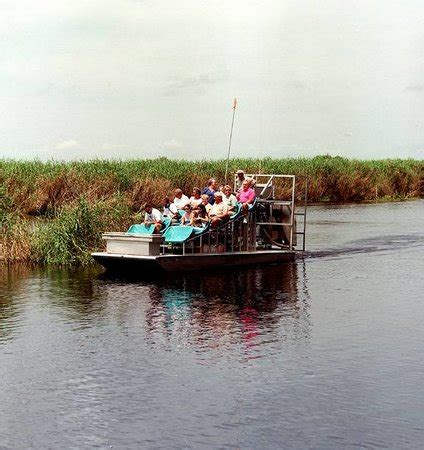 everglades boat tours near boca raton the top 10 things to do near west palm beach airboat rides