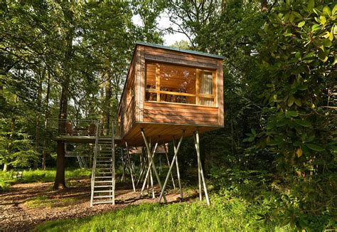 tiny tree house the baumgefl 252 ster treehouse resort baumraum small