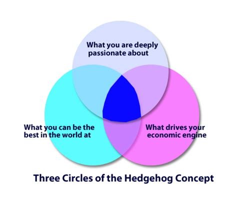an introduction to the three circle strategy for a fulfilling books hedgehog concept the three circles yannick den bos