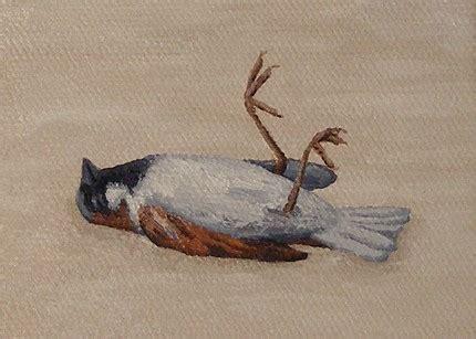 eye    party sparrow  upside  world