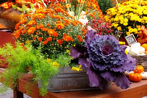 Fall Landscaping Ideas 2920 Fall Flower Garden