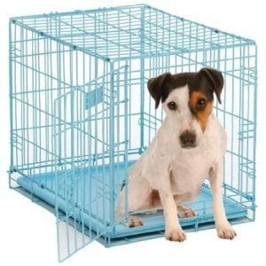 barking in crate crate puppies at how to stop cying whining