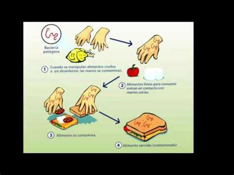 alimento biologico contaminaci 243 n en alimentos f 237 sica biol 243 gica y qu 237 mica