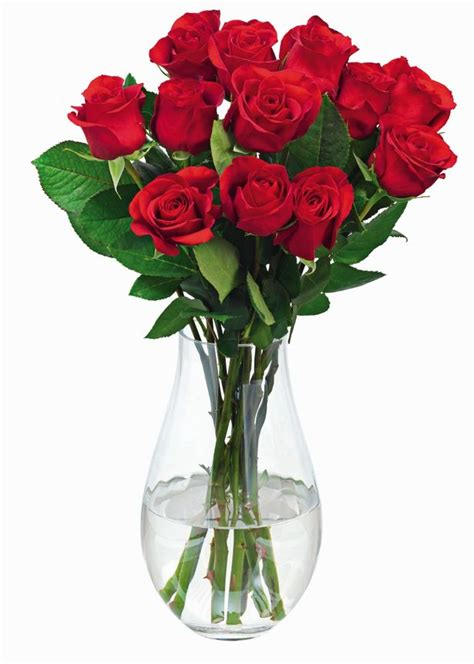 tesco valentines roses tesco s day roses 163 47 cheaper than identical one