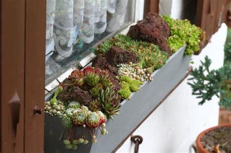 Blumenkasten Fensterbank Aussen by Wie Balkonk 228 Sten Sichern Mein Sch 246 Ner Garten Forum