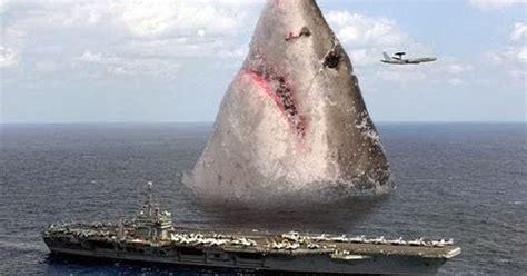 misteri hiu megalodon  hidup