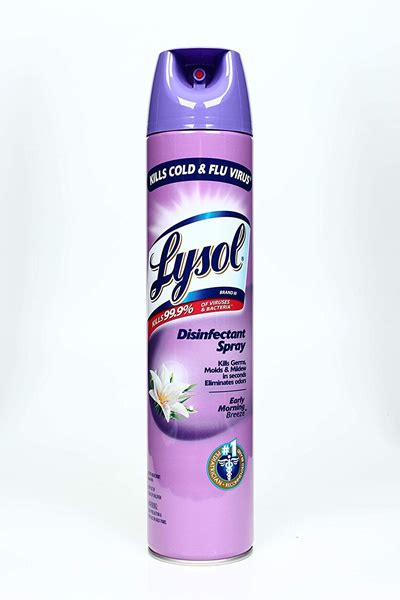 qoo lysol disinfectant spray early morning breeze  grams toys