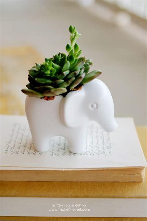 Elephant Wall Planter by 20 Succulents Quot In Things Quot Best Of Pinterest Tinselbox