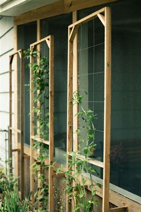 simple garden trellis outside dining room window easy garden trellises back