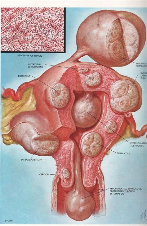 dolore rettale interno bartolinite in gravidanza cura