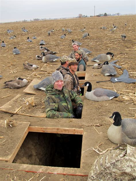 goose hunting layout blind tips a goose hunter s dozen colorado outdoors online