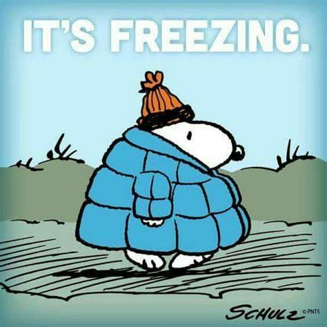 cold weather funny on pinterest best 25 funny cold weather quotes ideas on pinterest