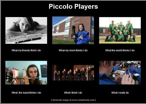 Piccolo Meme - piccolo players friends mom society the band me and