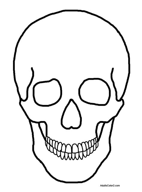 human skull coloring page human skull coloring pages the brain and skull coloring