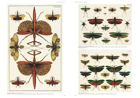 libro seba cabinet of natural booktopia albertus seba s cabinet of natural curiosities 25 by albertus seba 9783836515832