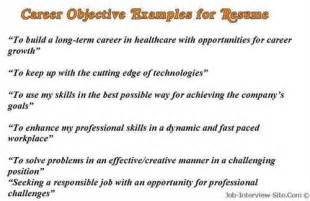 Sample Of Career Goals And Objectives Career Objective Examples For Resume Google Sites