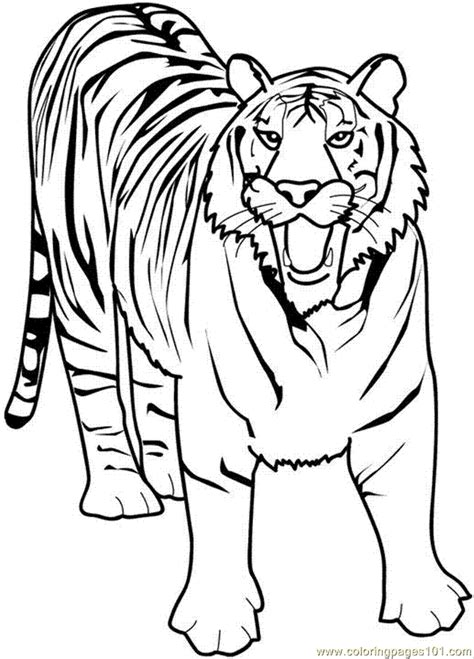 coloring pages 21 tiger animals gt tiger free printable