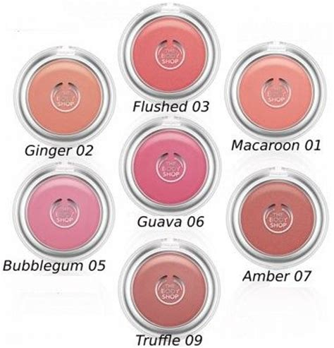 Shoo All In the shop all in one blusher reviews photos makeupalley