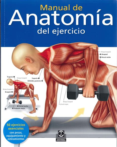 libro anatoma para posturas de paidotribo manual de anatom 205 a del ejercicio