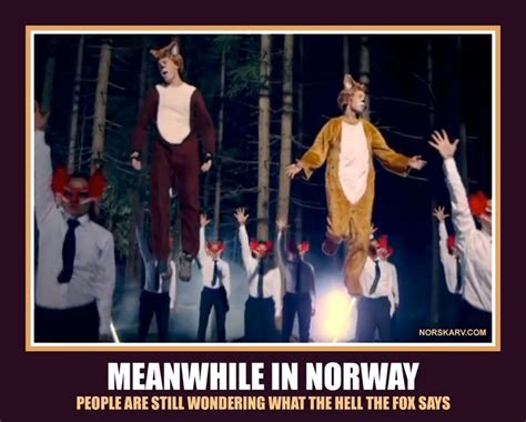 Norway Meme - 70 best meanwhile in norway images on pinterest norway