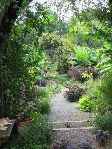 favorite garden montrose hillsborough nc pith vigor