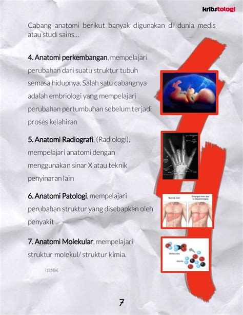 Fisiologi Manusia Edisi 8 pengantar anatomi fisiologi manusia