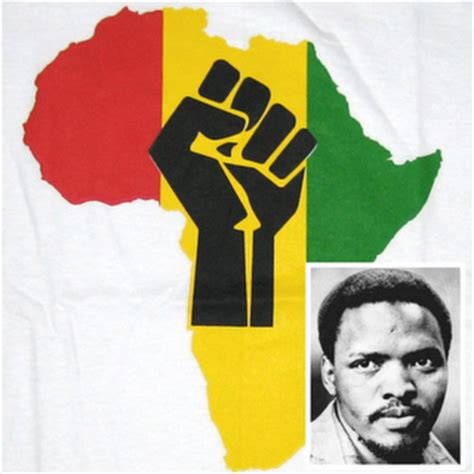 south africa remembers a fallen steven bantu biko