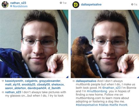 puppy captions for instagram mutt bombing a pawsome use of instagram sociallygold social media consultant