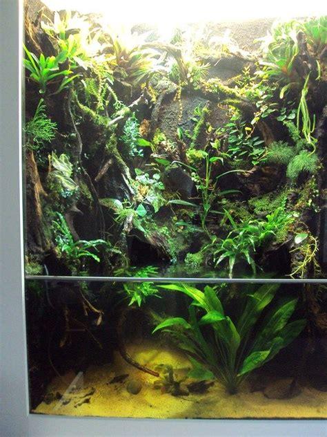 aqua terrarium designs 75 best aqua terrarium images on plant nursery vivarium and fish tanks