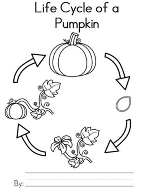 Coloring Pages Of Life Cycle Of Pumpkin | free pumpkin life cycle writing activity by teaching with