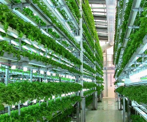 vertical vegetable gardening systems veggie factory world s vertical farm run entirely