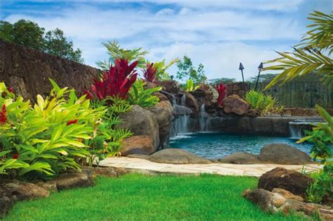 hawaiian themed backyard 17 best images about pool ideas on pinterest swimming