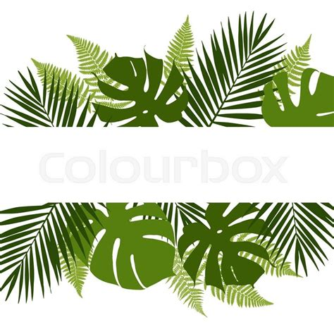 Poster Daun Suplir tropical leaves background with white banner palm ferns