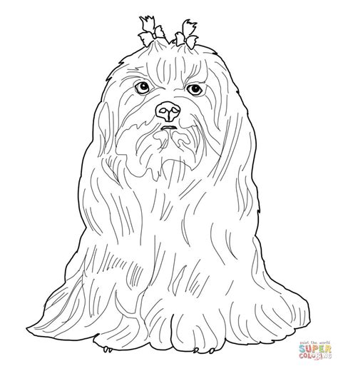 coloring pages of maltese puppies maltese dog coloring page free printable coloring pages