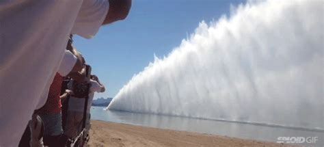 man drags shark behind boat drag boat racing shoots up an awesome wall of water behind it