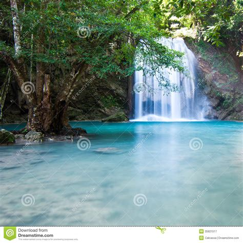 beautiful waterfalls with flowers most beautiful waterfalls with flowers most beautiful