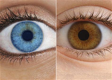blue eyed psychology discrimination mkenya ujerumani