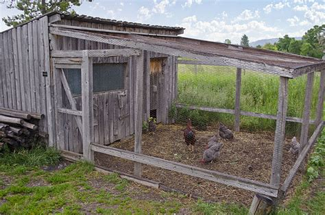 Chook Shed Designs Australia by File Chicken Coop Tinsley Living Farm Museum Of The