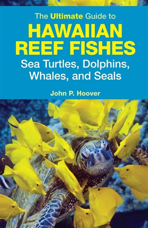 The Ultimate Guide To Hawaiian Reef Fishes Sea Turtles | the ultimate guide to hawaiian reef fishes sea turtles