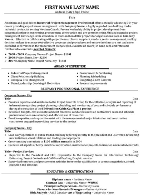 sample resume for an assistant it project manager monster com