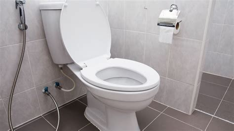 in this toilet how to fix a leaking toilet youtube