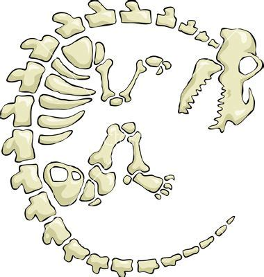 printable dinosaur skeleton template dinosaur bones template s 248 gning birthday