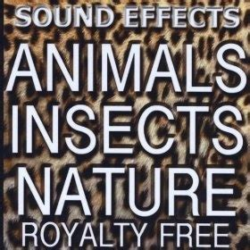 backyard animal sounds 17 best images about science underground animals on pinterest ants animal