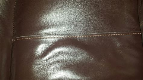 Can You Get Bed Bugs In Leather Sofa Hereo Sofa