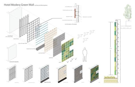 green wall section detail green wall detail pictures to pin on pinterest pinsdaddy