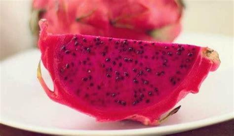 membuat jus buah naga merah campur apel resep jus sehat
