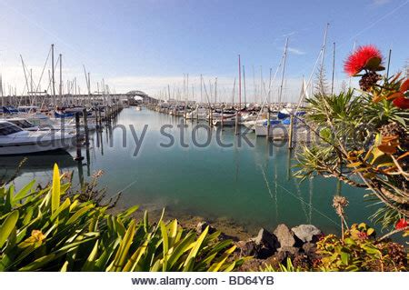 boat mooring auckland boats mooring in westhaven marina in auckland city new