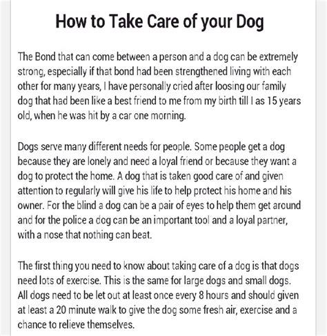 how to take care of a puppy how to take care of your trusper