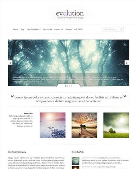 theme junkie forester giornali online su wordpress 95 temi in stile quotidiano