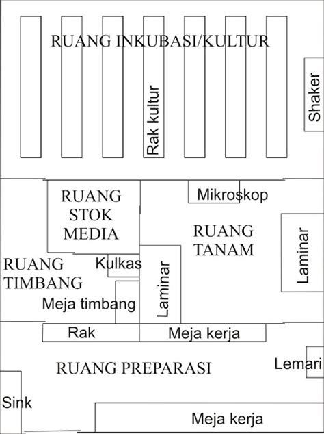 layout laboratorium kimia kultur jaringan ruangan laboratorium kultur jaringan
